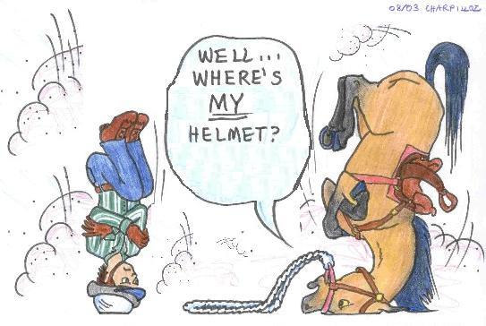 Horse Brains